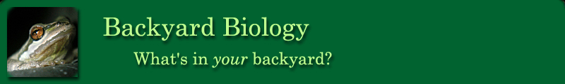 Backyard Biology header